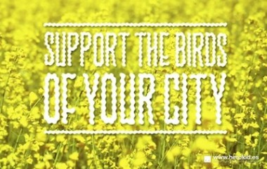 Herokid™ Support the Birds of Your City Campaign